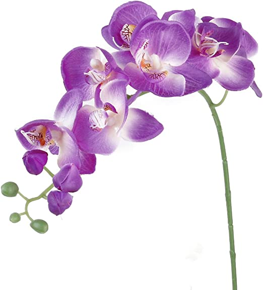 Amazon Com 1 Piece Of Artificial Simulation Butterfly Orchid
