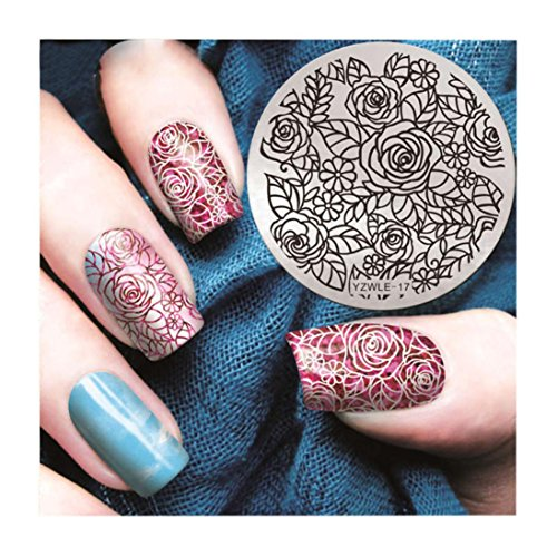 (Nail Art Printing Plate Image Stamping Plates Manicure Template Tool DIY)