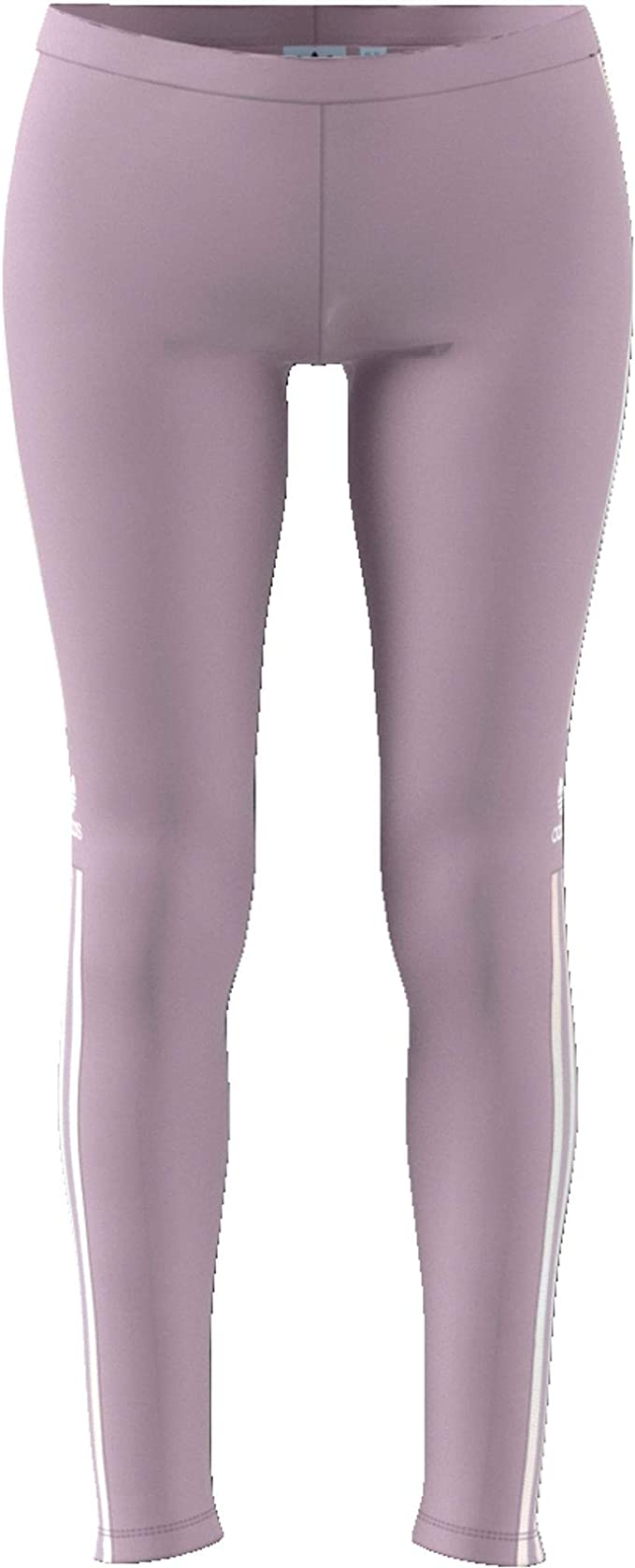 apagado opción martillo  adidas Women's Trefoil Tight, Soft Vision, Size: 36: Amazon.co.uk: Sports &  Outdoors