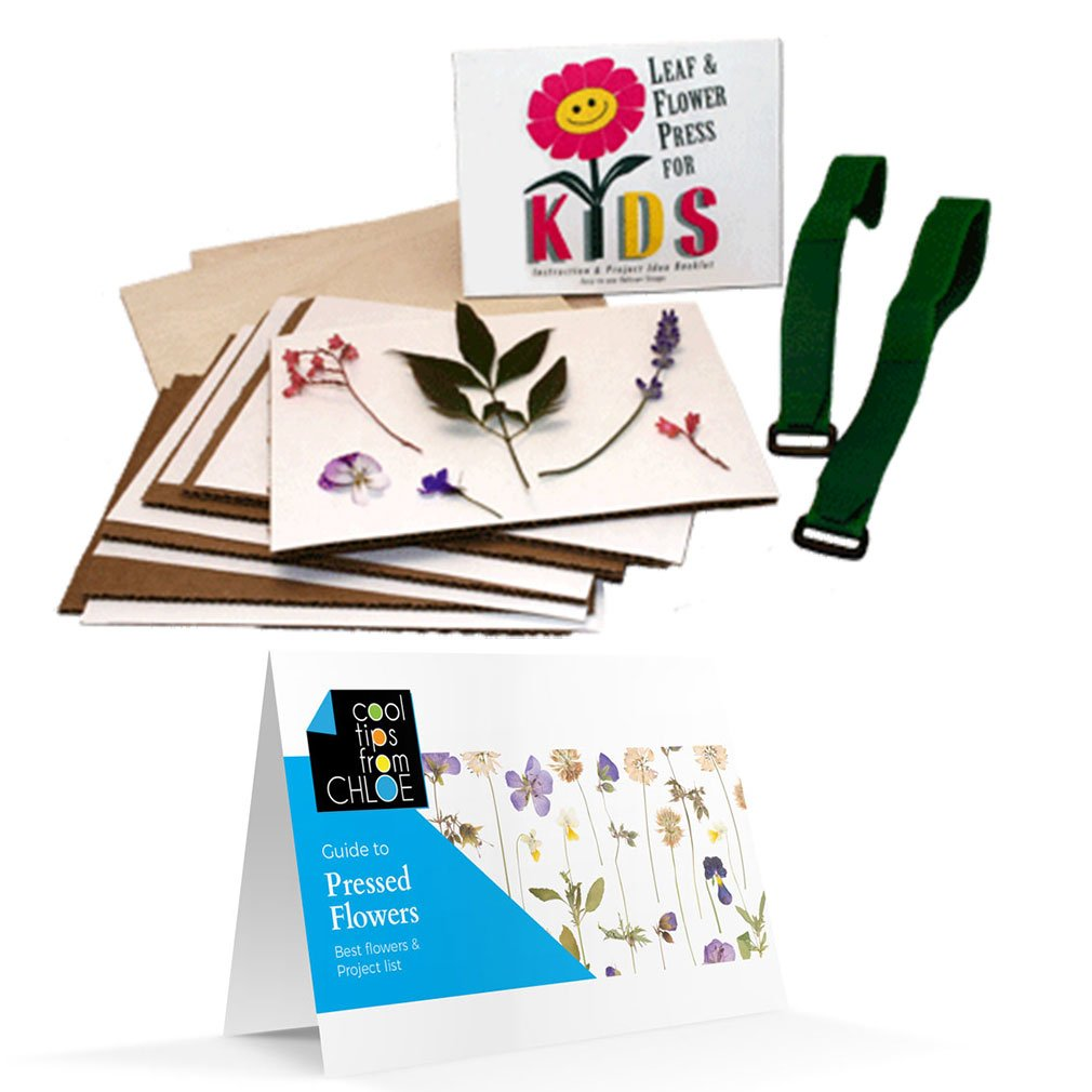 Nature's Pressed Flower Pressing Kit for Kids and Bonus Flower Press Guide by Nature Press