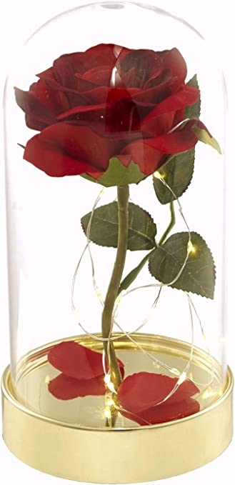 die schöne und das biest rose