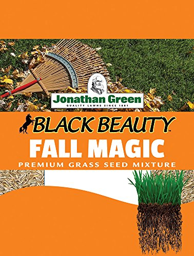 Jonathan Green 10765 Fall Magic Grass Seed Mix, 3 Pounds (Best Grass Seed For Hard To Grow Areas)