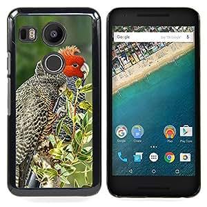 """For LG GOOGLE NEXUS 5X H790 Case , Las plumas pájaro rojo árboles Naturaleza Primavera"""" - Diseño Patrón Teléfono Caso Cubierta Case Bumper Duro Protección Case Cover Funda"""