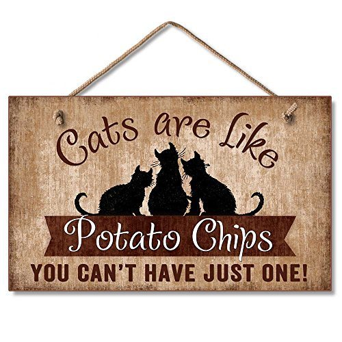 Highland Graphics Cats Are Like Potato Chips Humorous Sign Multi