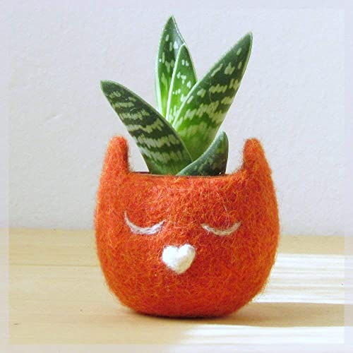 Animal planter Cat head planter Felt succulent planter Orange rust planter