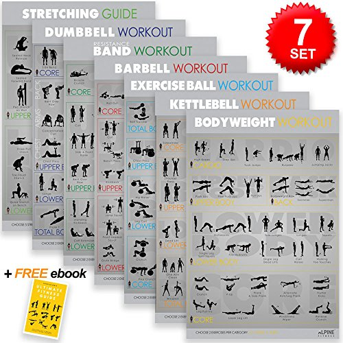 7 Exercise & Fitness Posters | Large Laminated Gym Planner Charts for Great Workouts - Guide to Build Strength (Stretch, Bodyweight, Ball, Dumbbell, Barbell, Band, Kettlebell) | Alpine Fitness by Alpine Fitness