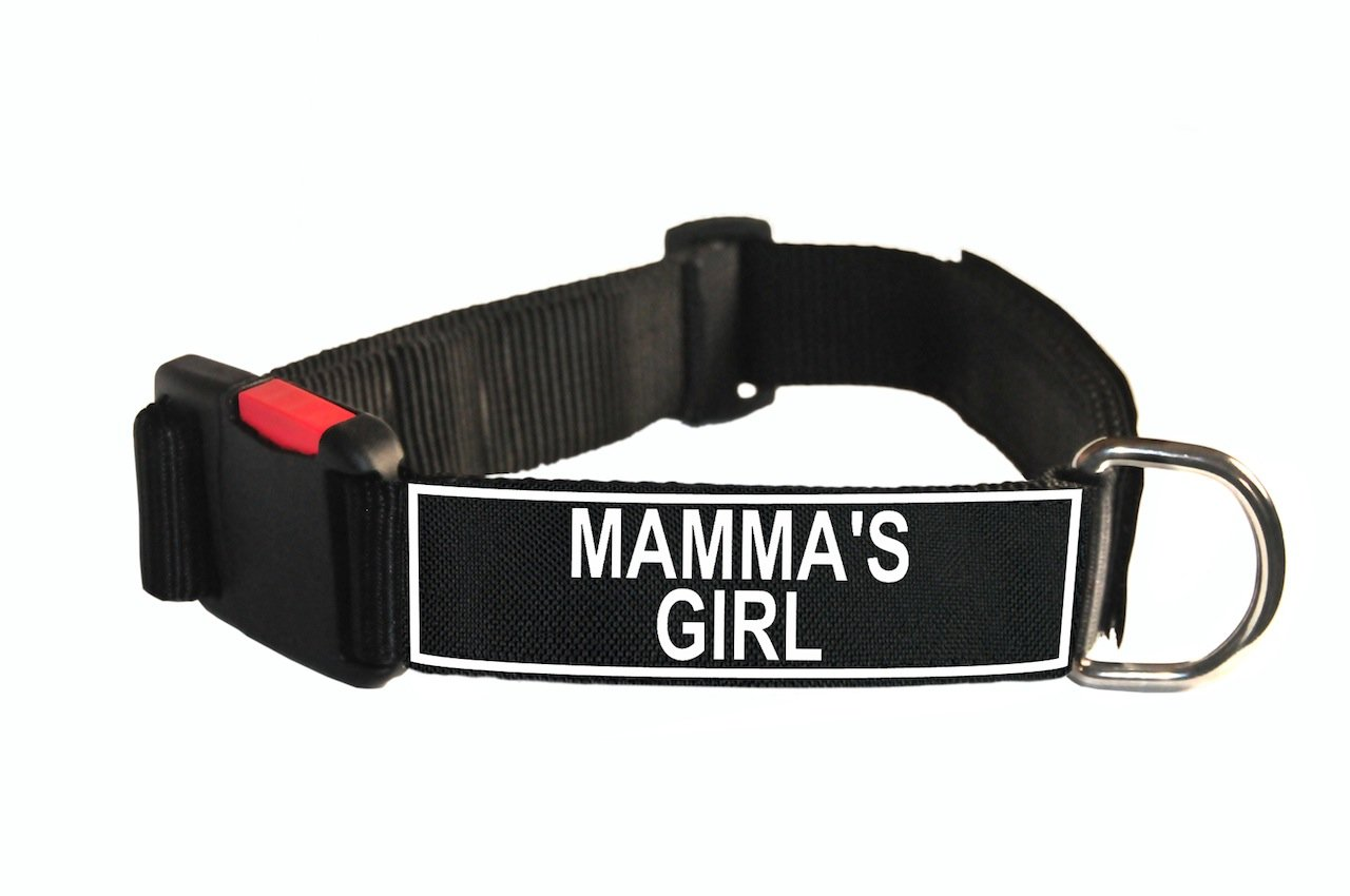 Dean & Tyler Nylon Patch Dog Collar with Mamma's Girl Patches, Medium, Fits Neck 21 to 26-Inch