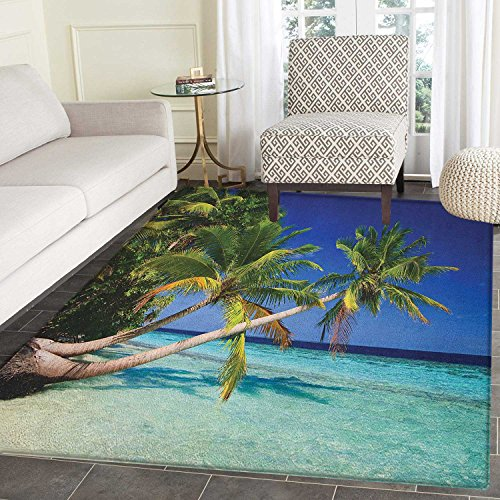 Blue Outdoor Rug Bay (Ocean Print Area rug Maldives Bay Paradise Resort Summer in Pacific Holiday Destinations Indoor/Outdoor Area Rug 3'x4' Navy Blue Turquoise Green)