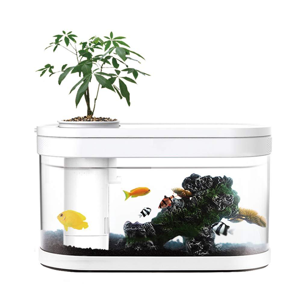 FU LIAN Scientific Acrylic Fish Tank, 5 LED Lights, Amphibious Ecology, Mini, Decorative Plastic Aquatic Plants, Living Room Study, Decorative Gifts, White by FU LIAN