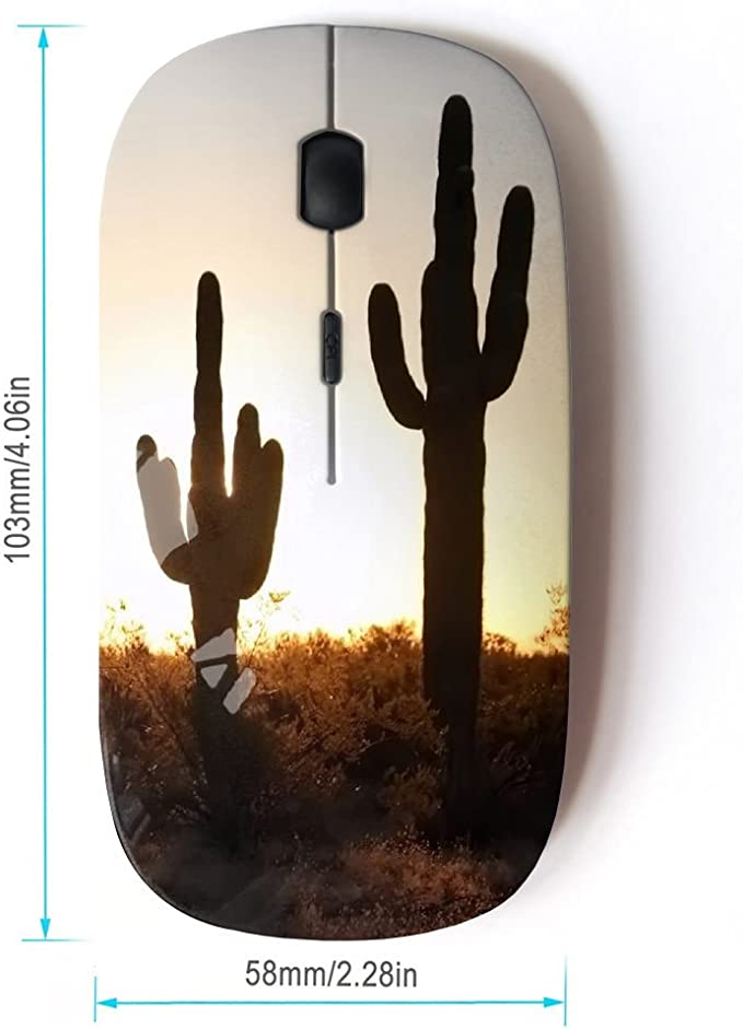 STPlus Cactus Flower Pattern 2.4 GHz Wireless Mouse with Ergonomic Design and Nano Receiver
