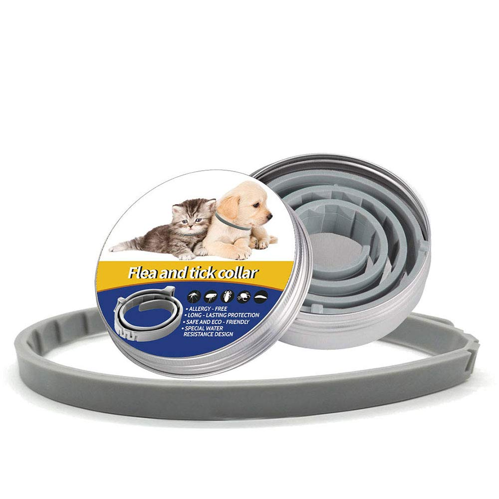 F lea and T ick Collar for Dogs, 8 Months Continuous Prevention, 25 Inches Long, 1 Size Fits All, Premium Plant-Based, All Natural 105% Essential Oils