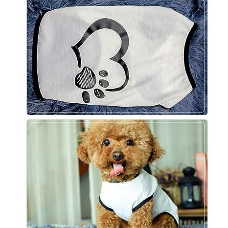 wikibird Otoño Costume Lindo Pequeño Traje Perros Pequeños ...