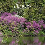 Illinois, Wild & Scenic 2019 7 x 7 Inch Monthly Mini Wall Calendar, USA United States of America Midwest State Nature