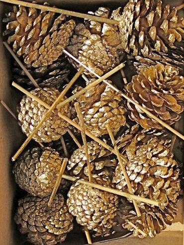 ゴールドPainted Stemmed Pine Cones ( Ponderosa ) 2.5 – 5で。 Case of 180 pine cones B071H618QB  Case of 180 pine cones