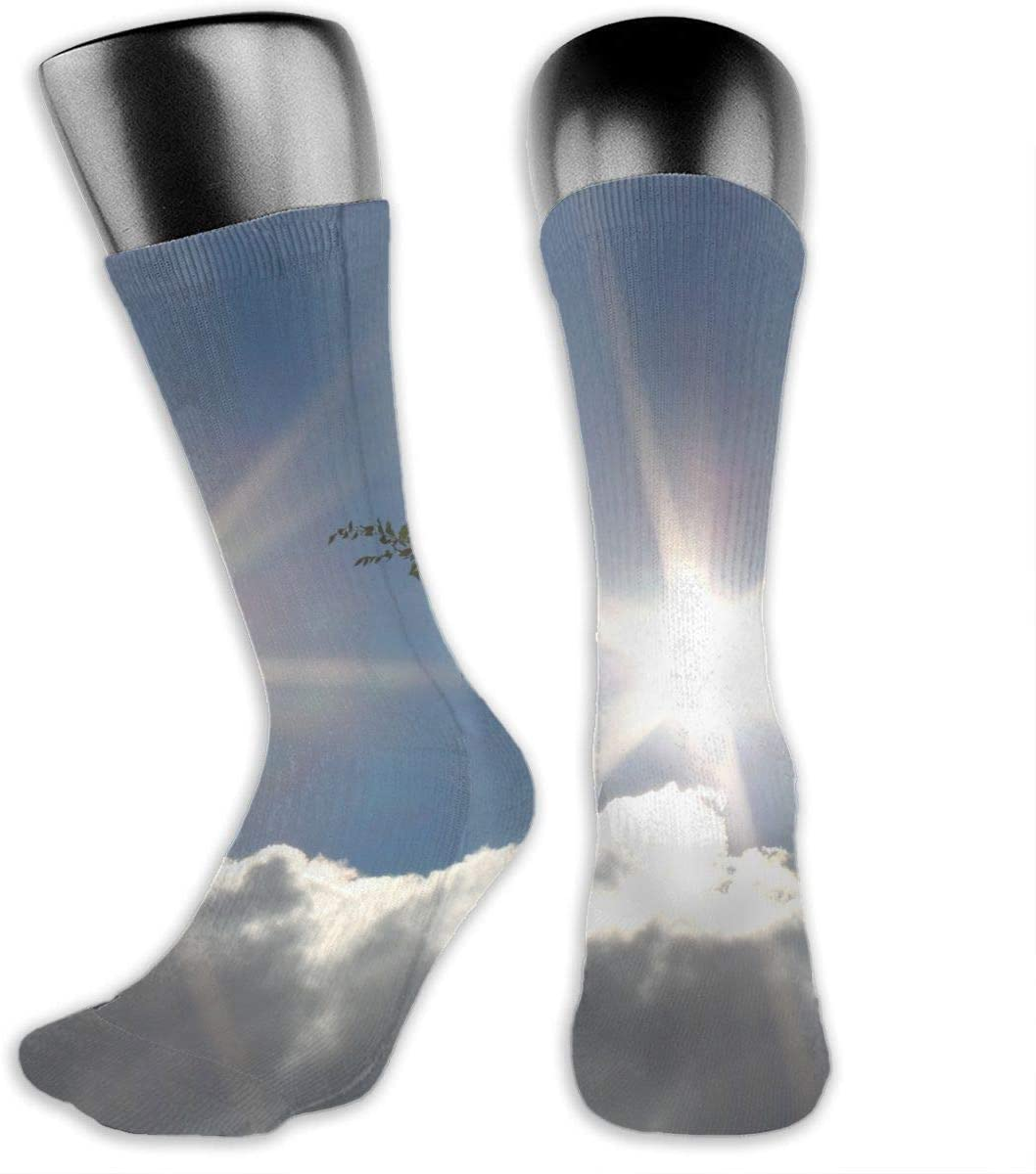 OLGCZM Sun in Blue Sky with Cloud and Tree Men Womens Thin High Ankle Casual Socks Fit Outdoor Hiking Trail