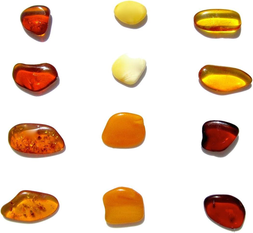 Genuino Ámbar Multicolor Planas Muy Pequeño Juego de 12 Piedras