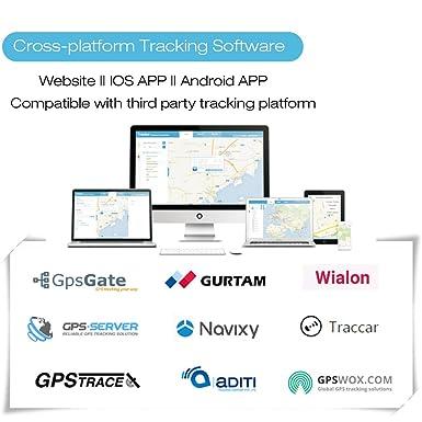 Amazon com: KingNeed 2 g GPS Tracker Collar GPS Tracker for