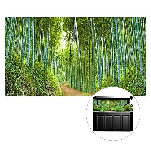 Jannyshop Fondo del tanque de pescados 3D con el cartel del fondo de bambú Decoración 3D 24.02