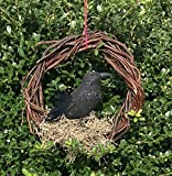 Edgar Allan Poe black glitter The Raven Grapevine door Wreath with Spanish Moss and Feathers
