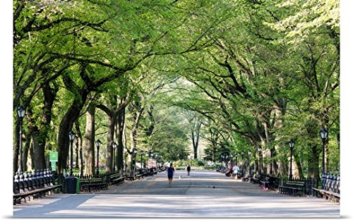 Poster Print entitled The Mall in springtime, Central Park, Manhattan, New York, USA by Great BIG Canvas - York In Malls Manhattan New
