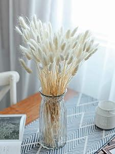 Birchio 100 Stems Natural Dried Bunny Tail Grass, Rabbit Tail Grass, Lagurus Ovatus for Home Decor, Small Pampas Grass for Boho Decor, Wedding Bouquets and Flower Arrangement (White)