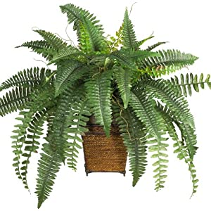 New Boston Fern w/Wood Wicker Basket Silk Plant 101