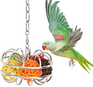 Stainless Steel Bird Foraging Feeder Toy for Medium Large Parrot Parakeet Cockatiel Conure Macaw African Grey Cockatoo Amazon Lovebird Budgie Finch Canary Cage Food Box Holder