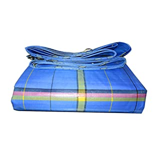 Tarpaulin Addensare Sunscreen Impermeabile Telo Antipioggia Telo Laminato Copertoni Leggeri A Vapore Tela Industriale Tela Cerata (dimensioni : 4 * 6m)