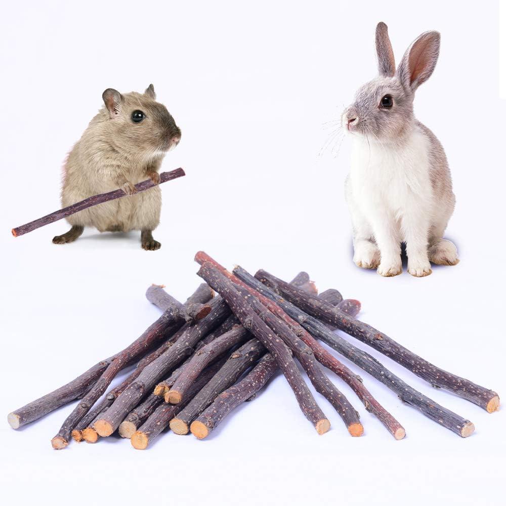 HTFDStar 500g Apple Sticks, Natural Organic Wood Apple Sticks, Molar Apple Sticks, Apple Chew Sticks, Apple Sticks Pet Snacks Chew Toys for Guinea Pigs Chinchilla Squirrel Rabbits Hamster