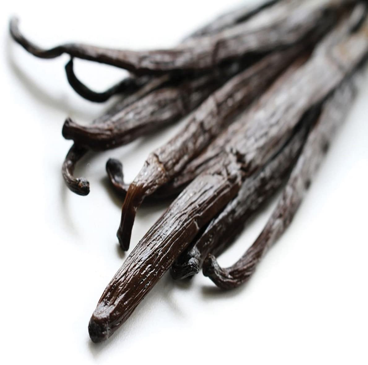 VANILLA BEAN FRAGRANCE OIL - 2 OZ - FOR CANDLE & SOAP MAKING BY VIRGINIA CANDLE SUPPLY - FREE S&H IN USA