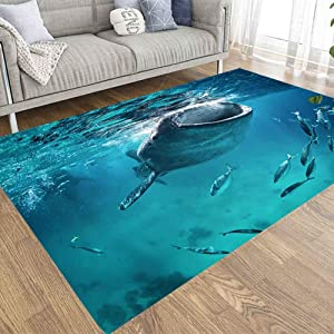 Soft Area Rug,Doocilsh 3X5 Area Rug of Indoor Outdoor Kids,Boys,Girls Area Rugs Use Whale Shark Eating The Surface Fish