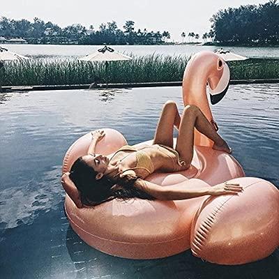 Flotador Inflable De La Piscina Del Flamenco Piscina Al Aire Libre ...