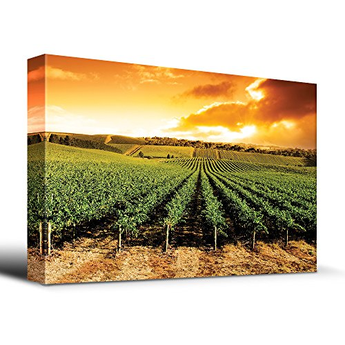wall26 Gorgeous Sunset Over Vineyard - Canvas Art Home Decor - 32x48 inches
