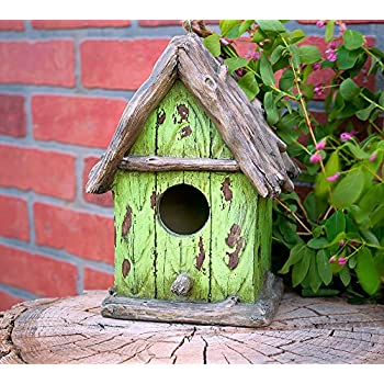 "Harmony Fountains The Little Green House 9"" Cottage Birdhouse -Stylish Functional Bird House. HF-G11 by"