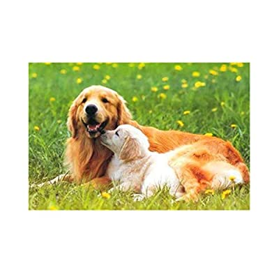 Adults 1000 Pieces Puzzle - Cute Dog Jigsaw Puzzles Up to 1000 Pieces for Adults & Kids: Toys & Games