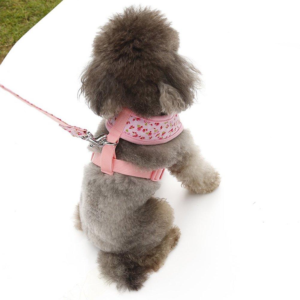 taglia L rosa UEETEK Motivi floreali piccoli piccolo cane cinturino pettorale con guinzaglio piombo