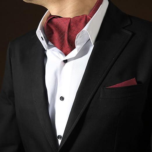 LIANGJUN Elegent Hombres Camisa Corbata Seda Corbata Bufanda ...