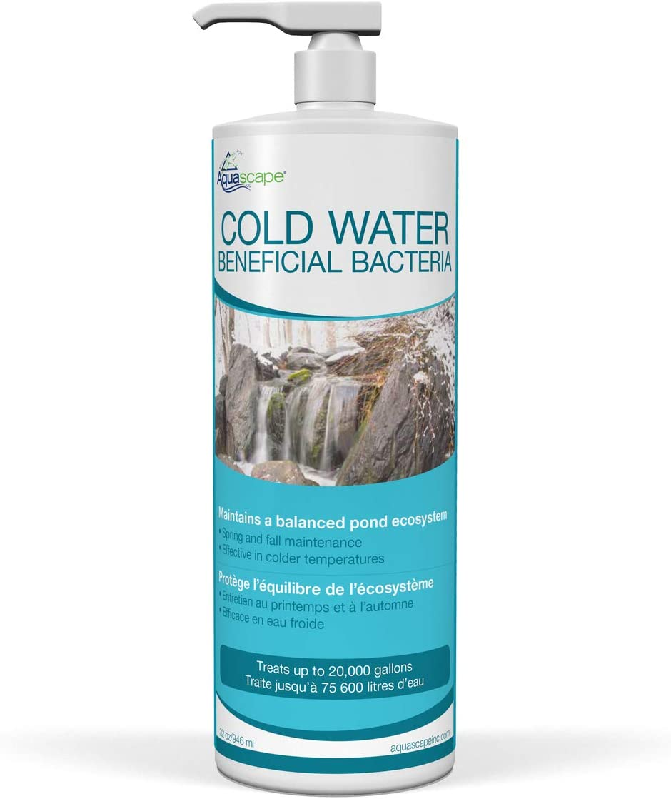 Aquascape 98894 Cold Water Beneficial Bacteria for Pond and Water Features, 32-Ounce