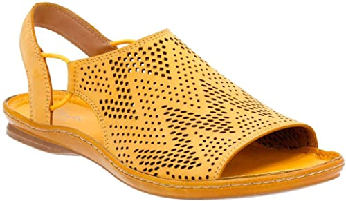 aa53cfb7108 Image Unavailable. Image not available for. Color  CLARKS Women s Sarla  Cadence Slingback