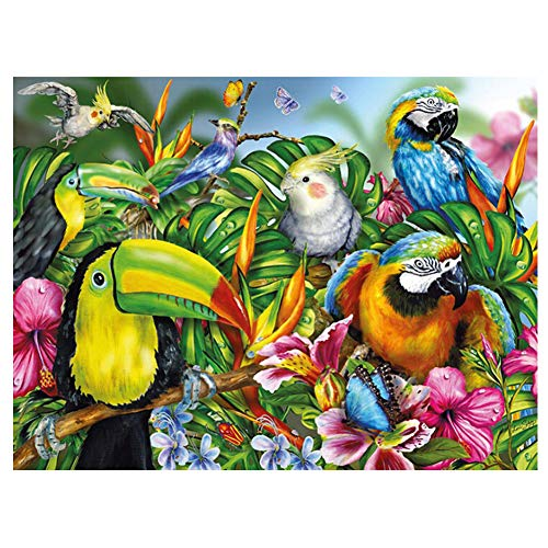 NEILDEN Parrot Diamond Painting Bird Rhinestone Embroidery Tropical Rainforest Animal 40×30cm ()