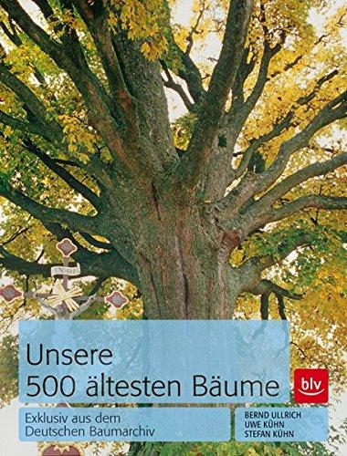 unsere-500-ltesten-bume-exklusiv-aus-dem-deutschen-baumarchiv