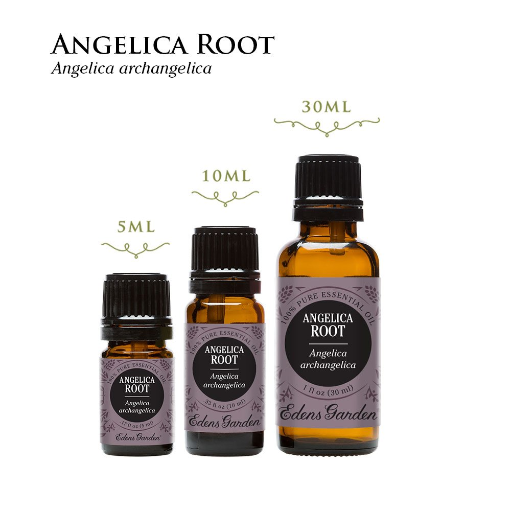 Angelica Root 100% Pure Therapeutic Grade Essential Oil by Edens Garden- 10ml Value Pack by Edens Garden (Image #2)