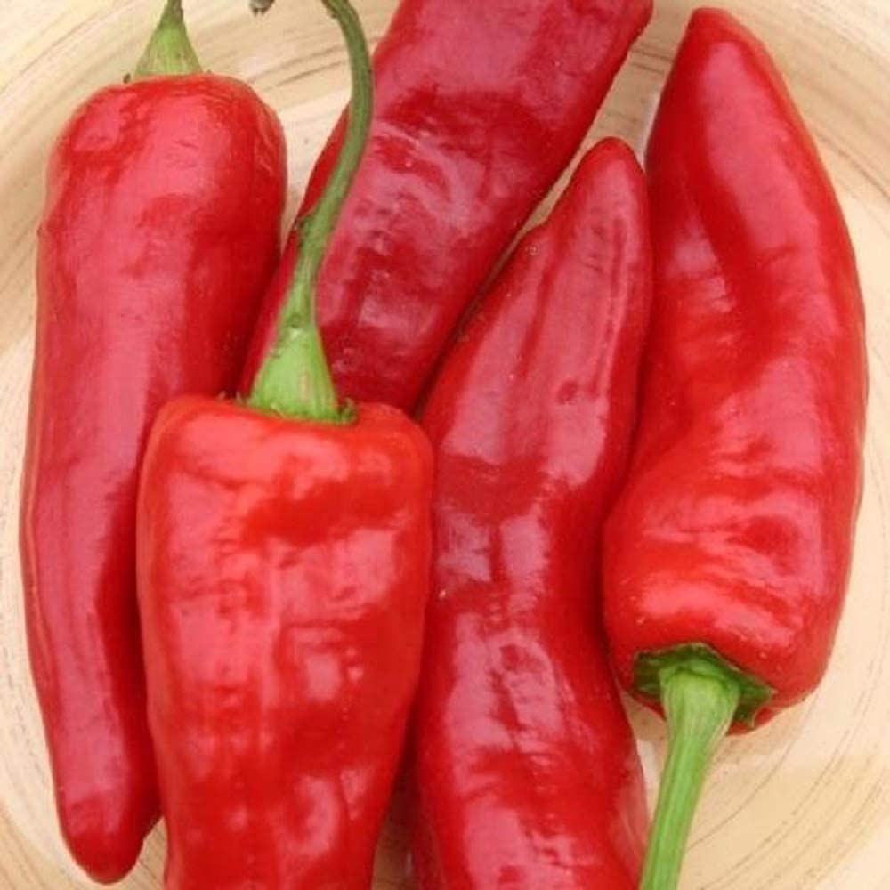 David's Garden Seeds Pepper Specialty Sweet Marconi Red SL0300 (Red) 25 Non-GMO, Heirloom Seeds