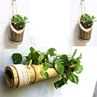 RAREPRODUCTS Bamboo Planter Hanging Vertical 2 POTS with Hanger