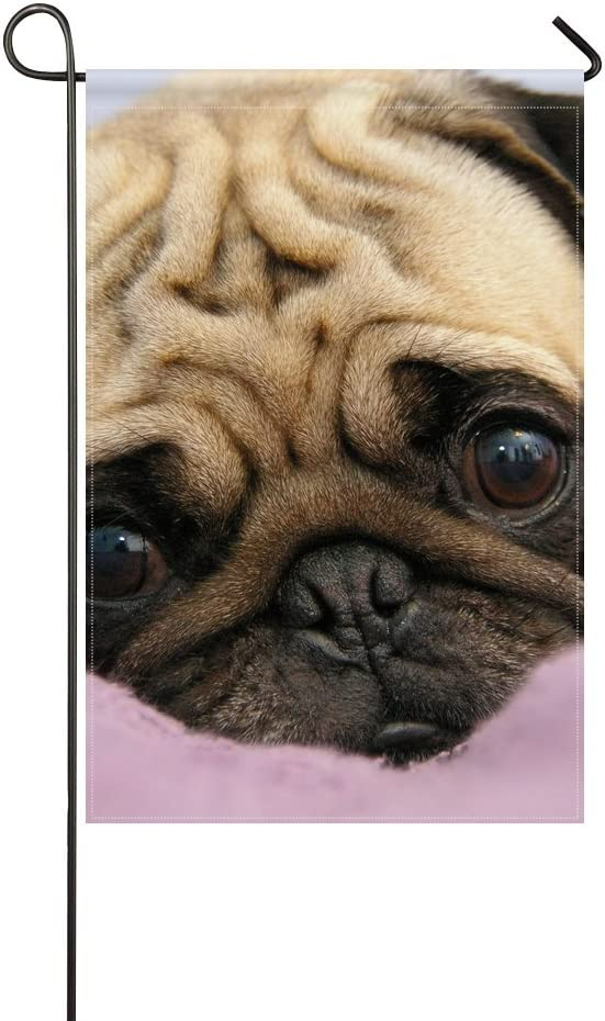 Amazon Com Wbsndb Garden Flag Animal Dog Pug Adorable Puppy Fluffy Small Cute Pet 12x18 Inches Without Flagpole Garden Outdoor