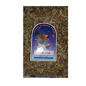 Avian Science Super Eclectus Bird Seed