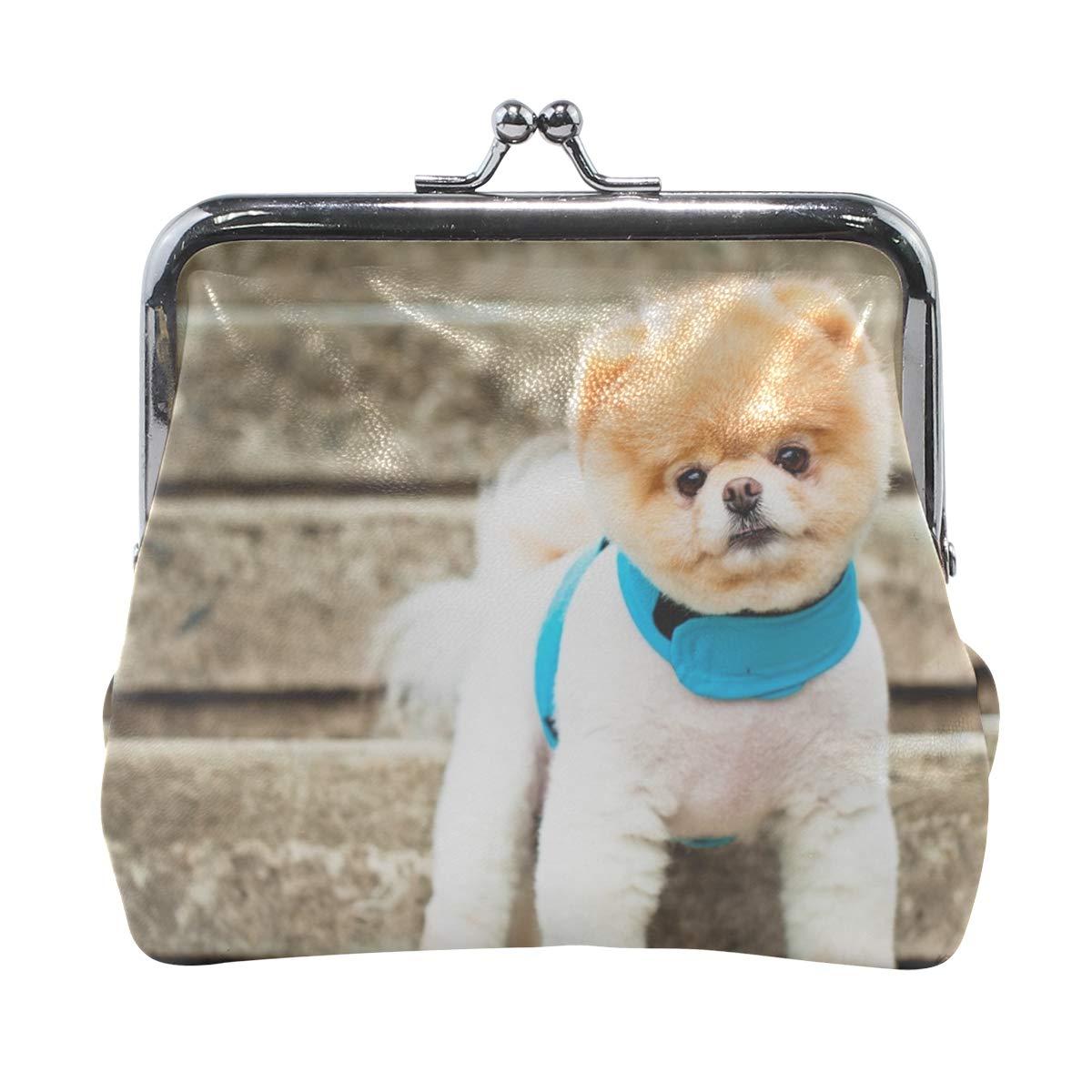 Amazon.com: Rh Studio Monedero Pomerania perro raza cara ...
