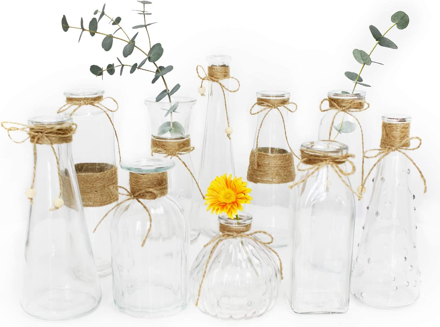 Unistyle Glass Vases Set of 10, Clear Glass Flower Vase with Rope Design and Differing Unique Shapes for Home Decoration