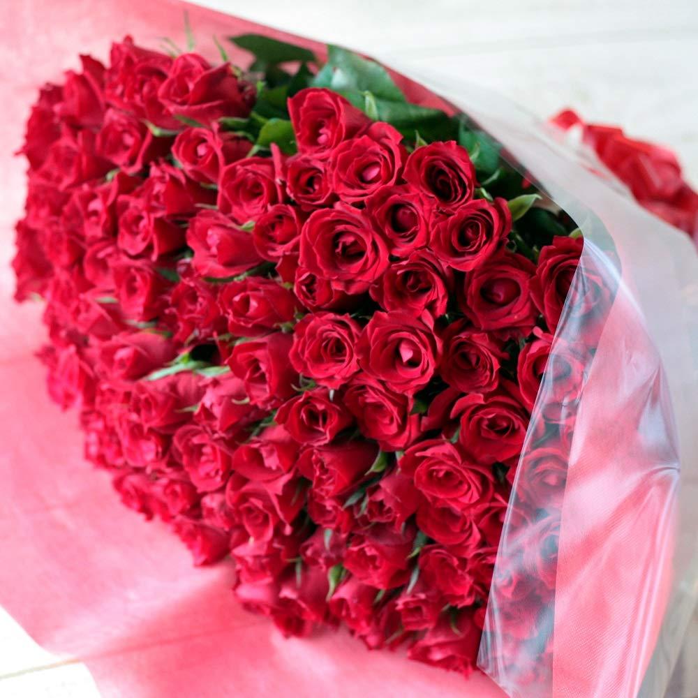 [ビズフラワー]【花束 バラ100本】レッド 薔薇 お祝い 誕生日 記念日 大切な日 BisesFlower B01KWXAC2K 赤
