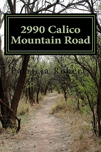 2990 Calico Mountain Road by [Roberts, Patricia]